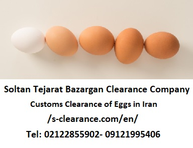 Customs Clearance of Eggs