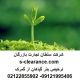 ترخیص بذر گیاهان از گمرک