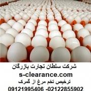 ترخیص تخم مرغ از گمرک