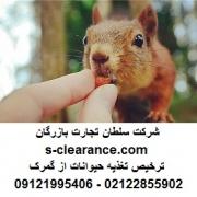 ترخیص تغذیه حیوانات از گمرک