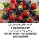 ترخیص توت فرنگی از گمرک