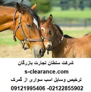 ترخیص لوازم اسب سواری از گمرک