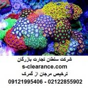 ترخیص مرجان از گمرک