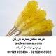 ترخیص نبات از گمرک