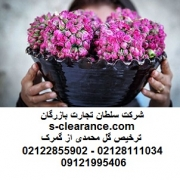ترخیص گل محمدی از گمرک