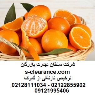 ترخیص نارنگی از گمرک
